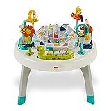 Fishr-Price FVD25 - 2-in-1 Activity Spielcenter Spieltisch mit Musik und Geräuschen inkl. Tierspielzeug für Babys und Kleinkinder