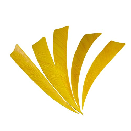 Baoblaze 5 Piezas Escudo Corte Tiro con Arco Cazar Flecha Pluma Fletching DIY Amarillo