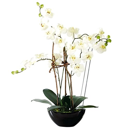 Pureday Pianta Artificiale Orchidea Bianca - con Vaso in Ceramica Nera - Altezza Circa 70 cm