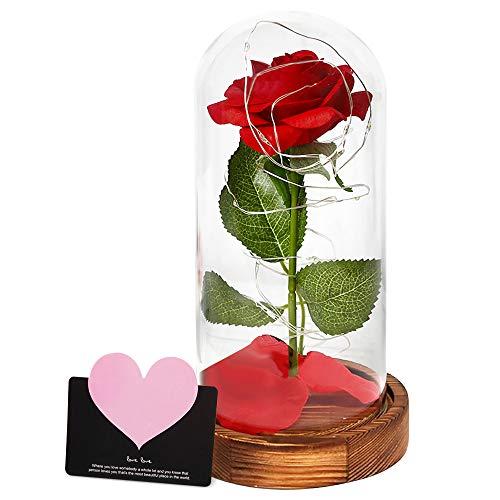 AMAYGA'La Bella y La Bestia Rosa Encantada, Elegante Cúpula de Cristal con Base Pino Luces LED, Beauty and Beast Regalos Magicos Decoración para Día de San Valentín Aniversario Bodas