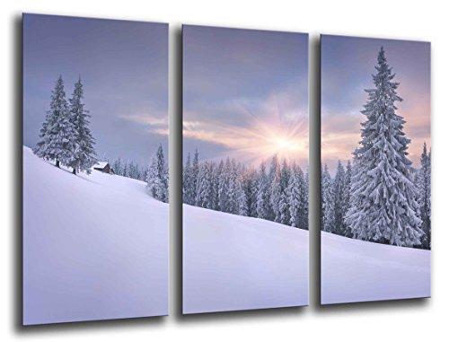 Cuadro Fotográfico Paisaje Bosque Nevado Invierno Tamaño