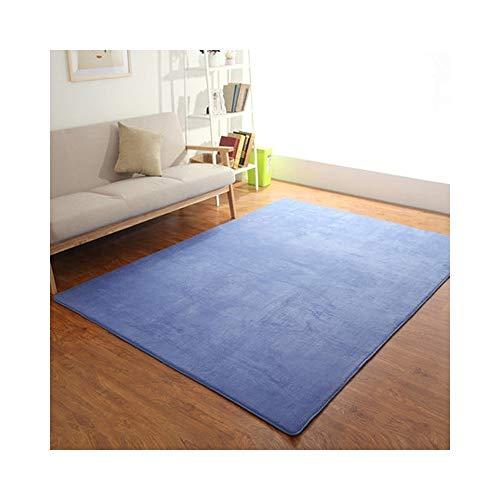 ZI LING SHOP- badmat tapijten, anti-slip badmatten antibacteriële anti-slip mat zachte badmat badmat badmat voor baby kinderen veiligheid met koraal stof tapijt C-80cmx160cm