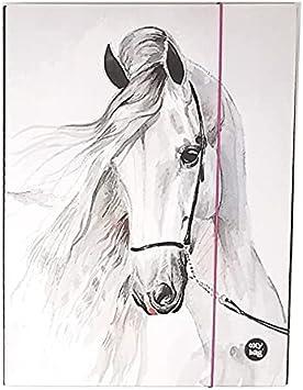 Theonoi Bonito diseño de caballo laminado – Caja de coleccionista de alta calidad / caja de dibujo / portadocumentos con goma elástica / goma elástica (caballo 4A)