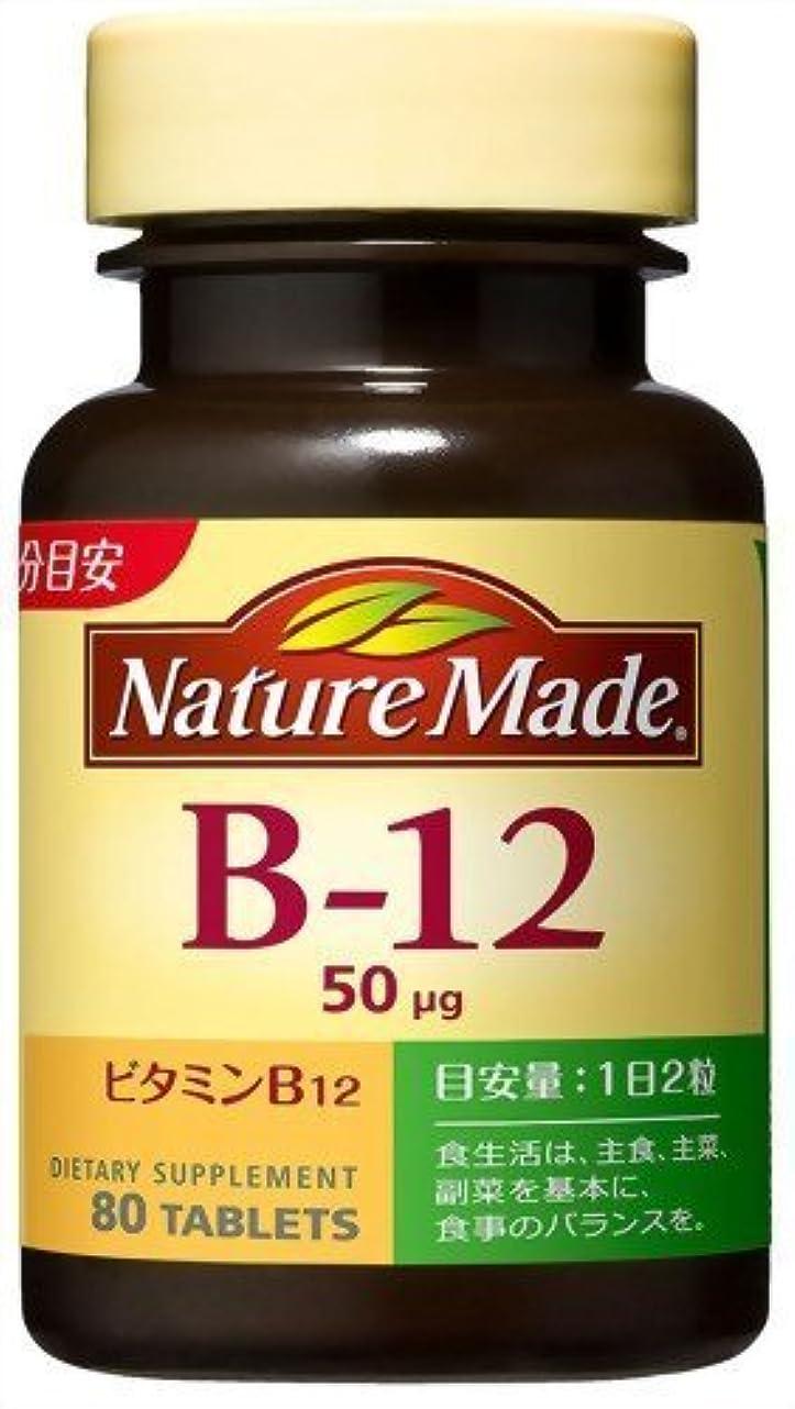 シェードプーノくびれた大塚製薬 ネイチャーメイドビタミンB12 80粒×2 907
