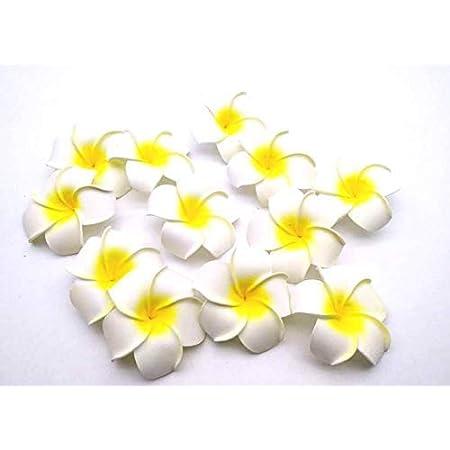 SATYAM KRAFT Artificial Floating Hawaii Flowers (White, 24 Pieces)