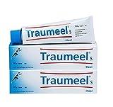 Heel Traumeel Cream Tube (100g, Pack of 2)