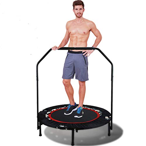 ANCHEER 40'' Fitness Trampoline for Adults with Handle Bars,Mini Rebounder Trampoline Bungee Folding,Home Gym Exercise Workout Jumper with Stability for Weight Loss, Indoor/Outdoor Cardio (Red)
