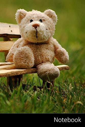 Notebook: Teddy, Stofftier, Lustig, Teddybär Notizbuch / persönliches Tagebuch / Schreibheft / Logbuch / Planer / Vokabelheft / Notizen - 6 x 9 Zoll ... Seiten mit Datumslinie, glänzendes Cover.