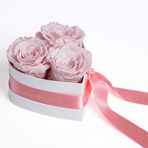 ROSEMARIE SCHULZ Heidelberg Rosenbox personalisiert mit Wunschtext in Herzform 3 Infinity Rosen in Box (Rosa, Wunschtext)