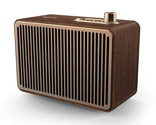 Philips Audio TAVS500/00 Tragbare Bluetooth-Lautsprecher, 10 Watt