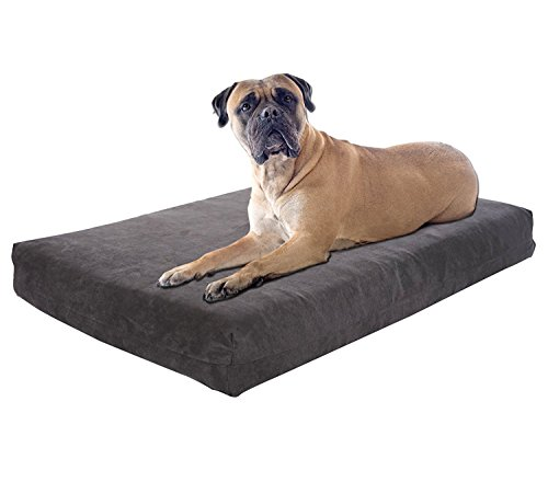 Pet Support Systems Orthopedic Dog Bed