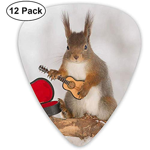 Eekhoorn Spelen De Viool Gitaar Picks,0.46mm 0.71mm 0.96mm,12 Pack Gitaar Picks Plectrums Met Picks Houder