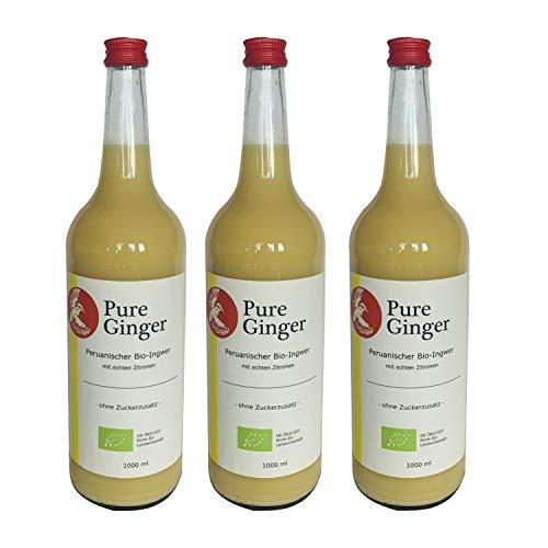 Pure Ginger – hochwertiger peruanische Bio-Ingwer ohne Zucker und künstliche Zusatzstoffe (3x1000ml)