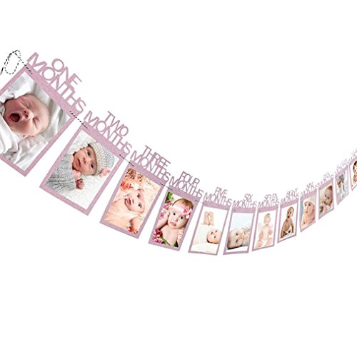 Baby Growth Record 1-12 Mouth Photo Rope Banner for 1st Birthday Party Decoration (Pink)