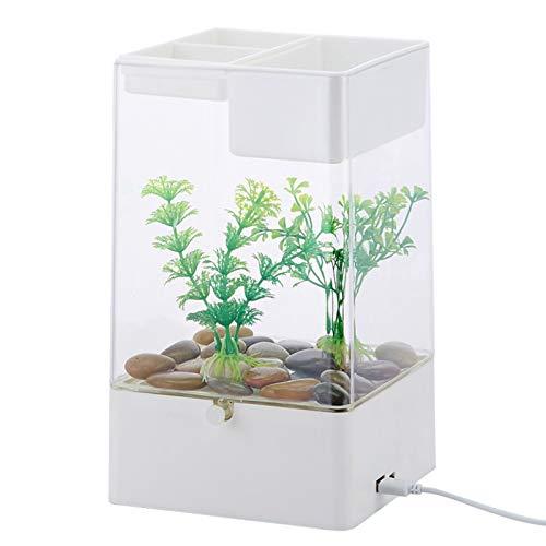Kleiner Fisch-Behälter, Acryl Gold-Fisch-Behälter, Minitisch Transparent Fish Tanks, USB Powered, unten mit bunten Lichtern White