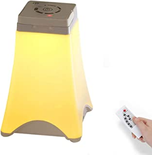 Gluckluz Touch Sensor Light Desk Lamp Bedside Table Night Lighting with Remote Control for Kids Indoor Bedroom outdoor Cam...