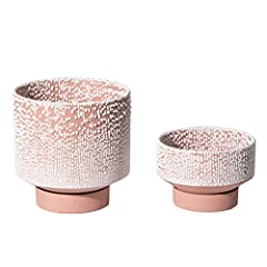 ELEGANT & UNIQUE DESIGN: Colored body with white water bead finished pot not only providing a color clash overview but also providing a contrast between the pots glazed and uneven surface and the smooth matte tray. SIZE: Combined with 2 handy sizes. ...