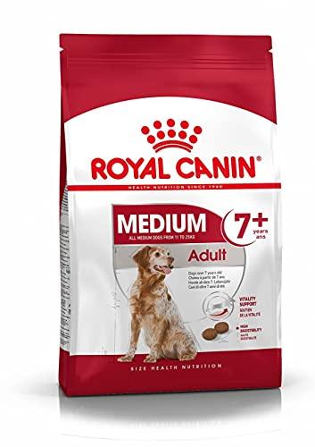 Royal Canin - Medium Mature - Nourriture pour chien - Races moyennes - 1 x 10 kg