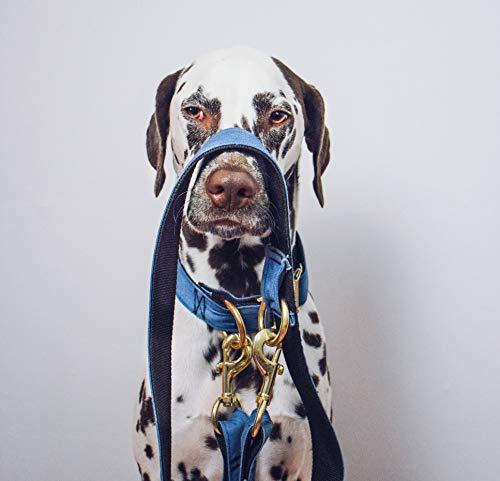 Handmade Jeansleine - Stabile Hundeleine aus Jeans - Leine für Hunde - Hundeaccessoires von How to be a Heartbreaker - der Manufaktur für von Hand gefertigte Hundeprodukte