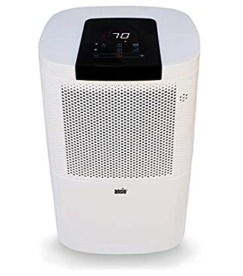 ANSIO Electric Dehumidifier