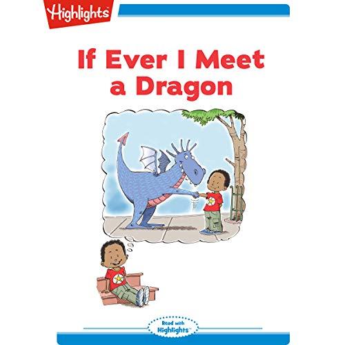 If Ever I Meet a Dragon audiobook cover art