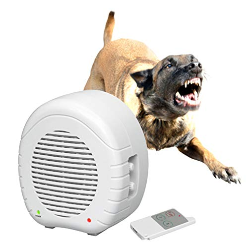 EW 01 Electronic Guard Dog Window Alarm System