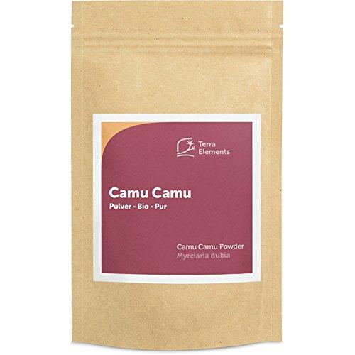 Terra Elements Bio Camu Camu Pulver, 100 g I Reich an Vitamin C I 100% rein I Vegan I Rohkost