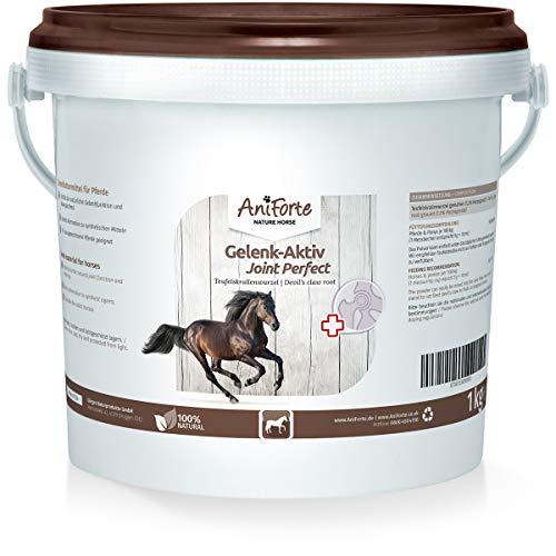 AniForte Garra del diablo en polvo para caballos 1kg - producto 100% natural para articulaciones, tendones y ligamentos. Ayuda a la movilidad y a la función articular, de alta aceptación