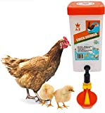 Dispenser Chicken Waterer Chick Supplies Automatic Refill elevated Gravity Drinker no Mess Hanging Mount Drinker Feeder- Bird Bucket Drinking Cup- Poultry Brooder Duck Hen Quail Water Box-Coop.(32 Oz)