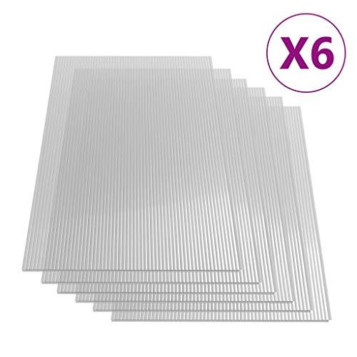 vidaXL 6x Paneles Lámina Placa de PC Cubierta Invernadero de Cámara Hueca Doble Pared Múltiple Ligero Fuerte de Policarbonato 6 mm 113x60,5 cm