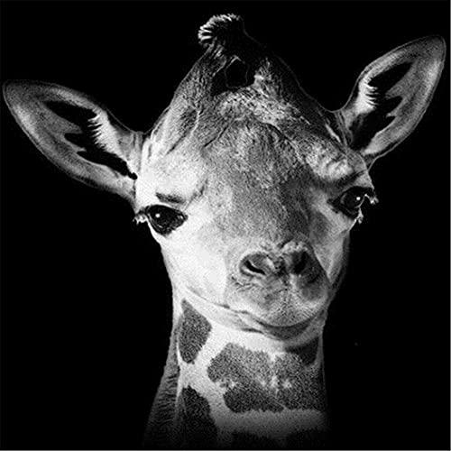 5D DIY Pintura de Diamante de Kits Animales ciervos Completo Crystal Rhinestone Sniño de Punto de Cruz Embroidery Diamond Art Decoración de la Pared del Hogar Diamond Painting Square Drill 80x80cm