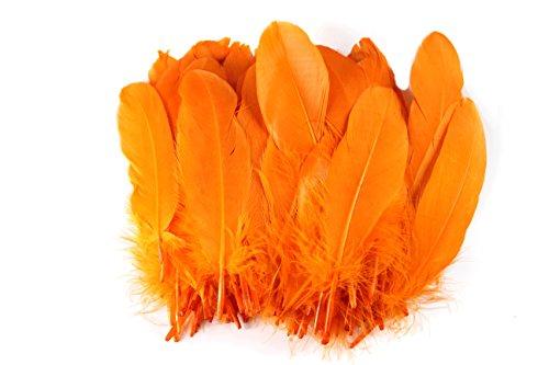 ノーブランド品 染め羽根 100枚 ガチョウの羽 15-20CM 工芸品 DIY 装飾用の羽根 多色