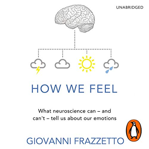How We Feel audiobook cover art