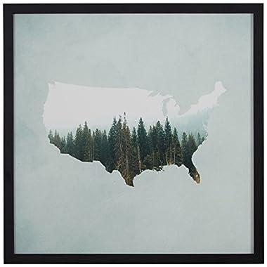 Rivet American Forest Map Print in Black Wood Frame, 12  x 12