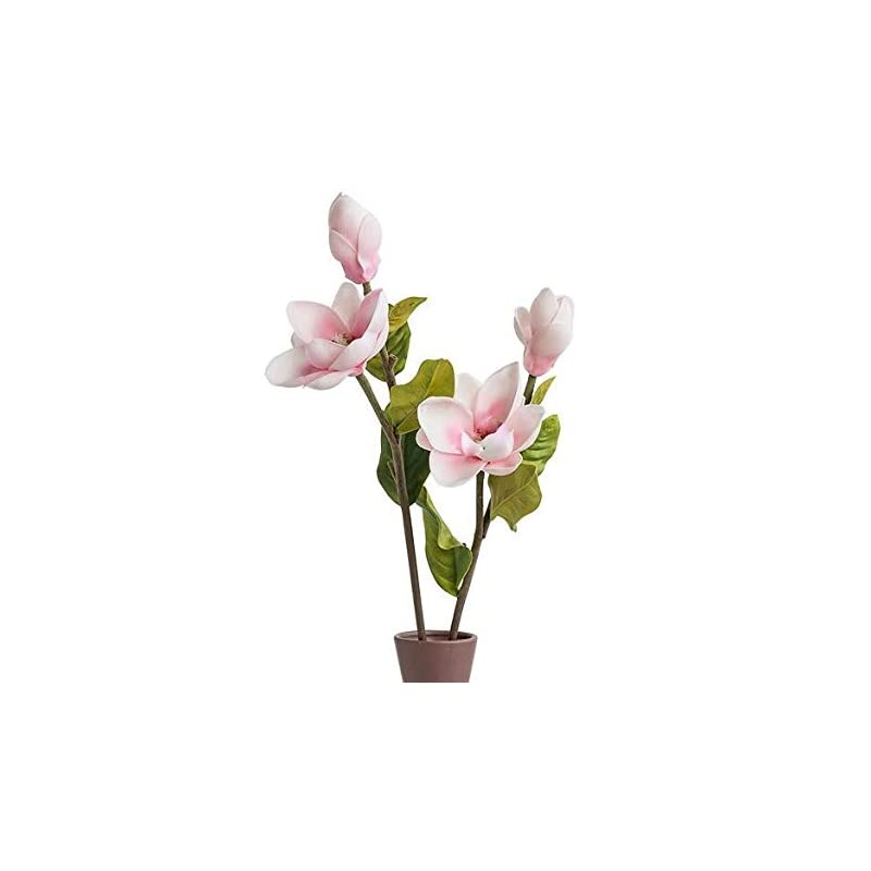 """silk flower arrangements floral kingdom 25"""" real touch artificial magnolia flowers for floral arrangements, gift wrapping, bouquets, home/office decor (pack of 2)"""