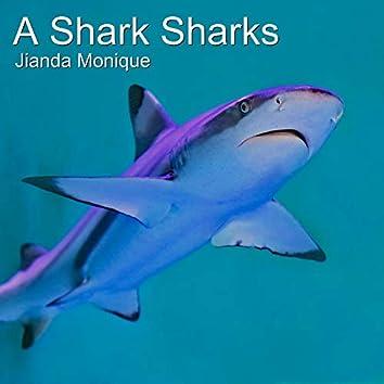A Shark Sharks