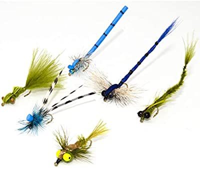 Outdoor Planet 12 Effective Dragonfly and Damsel Fly Fishing Flies   Dry Flies, Wet Flies, Nymphs Flies   Trout, Bass, Bluegill, Panfish, Browns and Rainbows