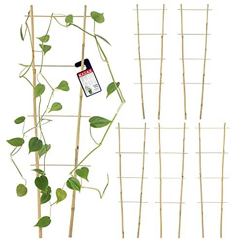 KADAX Bambusleiter, 5er Set, Stützleiter für Blumen, Garten-Pflanzenstütze aus Bambusholz, Blumengitter, Rankhilfe, Gitterspalier V-Form, Kletterhilfe (H:60cm, doppelt)