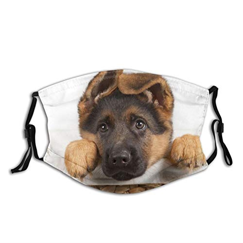 Cute German Shepherd Puppy Dog Face Mask With Filter Pocket Washable Reusable Face Bandanas Balaclava With 2 Pcs Filters