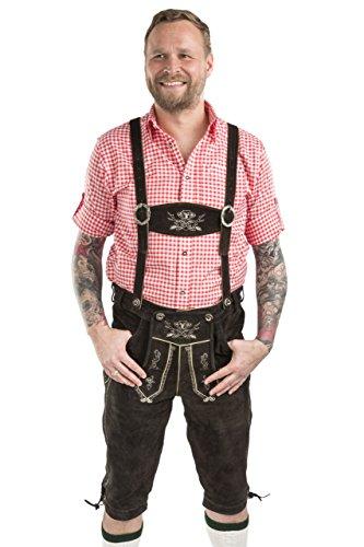 Schöneberger Trachten Hombres Lederhosen Kniebund - Pantalones de Cuero Trachten Hopfen&Malz (56, Marrón Oscuro)