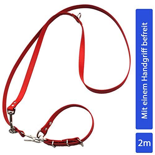 bio-leine 2m Befreiungsleine aus Biothane – 19mm breit I Hundeleine Moxonleine für kleine und große Hunde - Halsumfang 40-50cm I schmutz- und wasserabweisend - in Rot