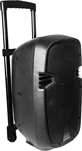 """Ibiza Mobile Beschallungsanlage 12""""/30cm Mit Usb/Sd, 2 Vhf Funkmikrofonen & Bluetooth"""