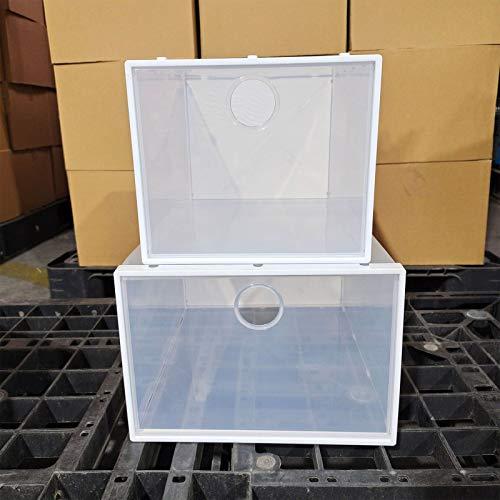 WONOOS Caja De Zapatos De Almacenamiento para El Hogar, Caja De Zapatos Tipo Cajón De Plástico Grueso Transparente Simple Que Se Puede Apilar con Un Zapatero Simple,L