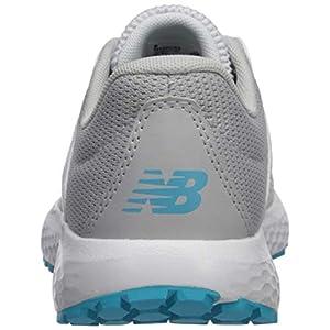 New Balance Women's 520v5 Cushioning Running Shoe, ARTIC FOX/LIGHT ALUMINUM, 6 M US