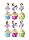 24x Cupcake Topper Picks (Sofia)