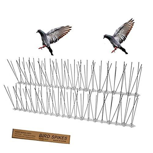 fdsad Picos Defensa De Aves Kit Pinchos Acero Inoxidable para Pájaros Espina Repelente Gran Disuasión contra Las Espinas Los Pájaros Dispositivo Asustado Pájaro Muro Seguridad 10cm