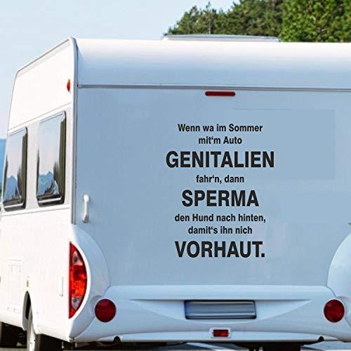 Pegatina Promotion Wohnmobil Wohnwagen Aufkleber Lustiger Spruch Typ2 ca 100cm hoch Wenn wa im Sommer mitm Auto GENITALIEN…
