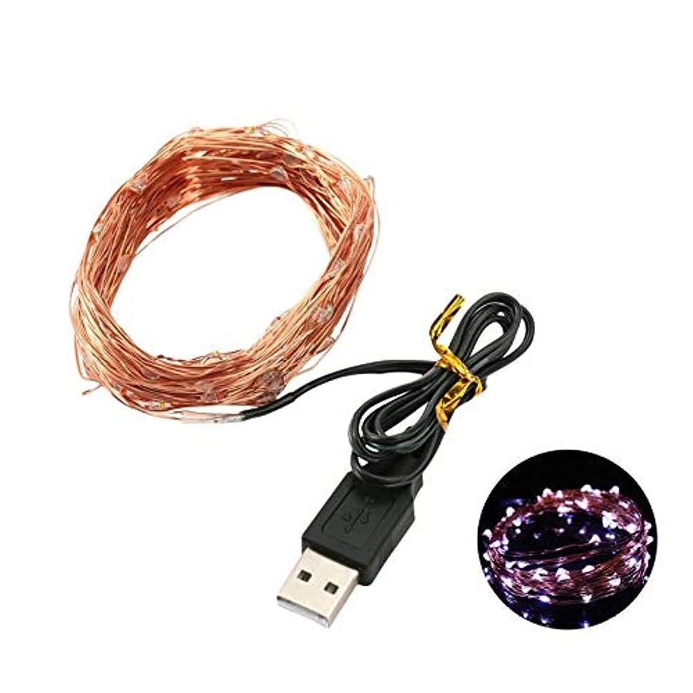 容疑者回転不倫Zhaozhe 10m100粒USB式 LEDライト 銅線ライト SMD 0603 結婚式 クリスマス 祝日 パーティー