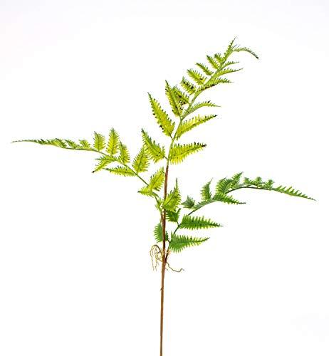 artplants.de Künstlicher Farnzweig, Luftwurzeln, 3 Blätter, 65cm, Ø 40cm - Künstliches Farn - Künstlicher Zweig