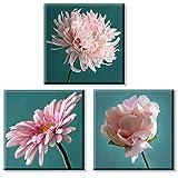 Cuadros Decoracion Flores Color Rosa Impresion en Lienzo 3 Piezas 30x30 cm con Bastidor de Madera Listo para Colgar apto para Salon Dormitorio Sala de Estar Cocina Baño